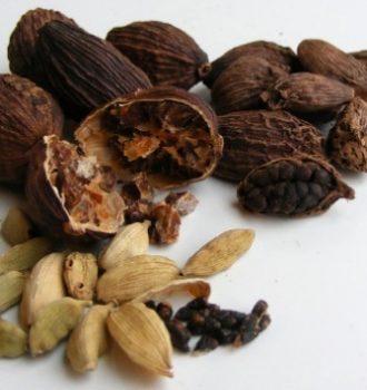 Кардамон сила растения: семя